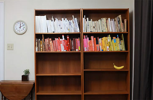 Organizing the Bookcase by Sean and Lisa Blonder Ohlenkamp