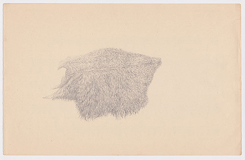 artist todd freeman etchings drawings