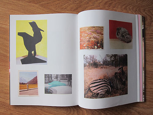 Foam international photography magazine