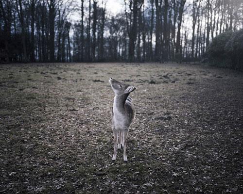 photographer photography tobias kruse