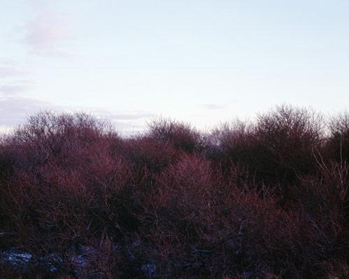 Dune photo book by Misha de Ridder