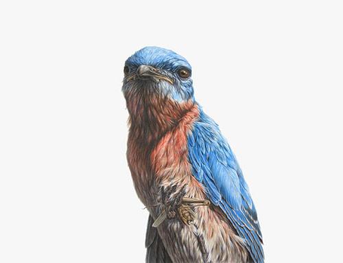 Artist George Boorujy