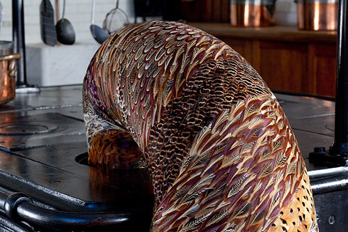 feather sculptures by artist Kate MccGwire