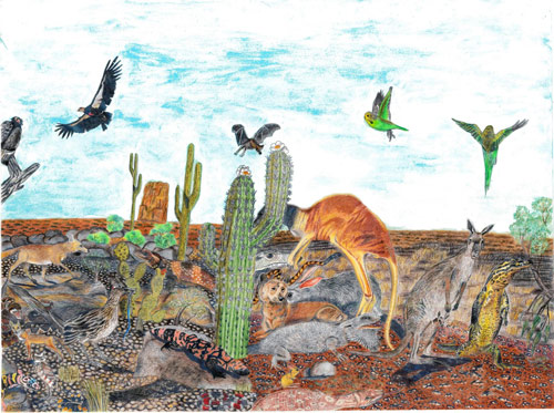 Drawings by autistic artist David Barth