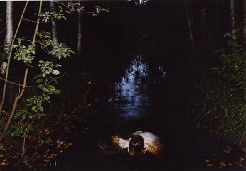 Photographer Aino Kannisto photography