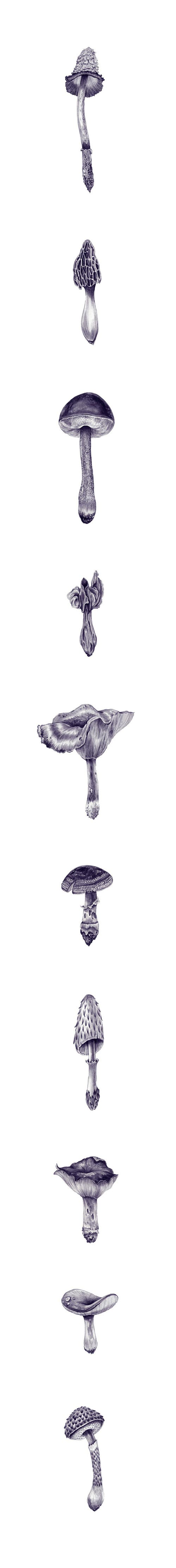 Drawings by artist Eibatova Karina