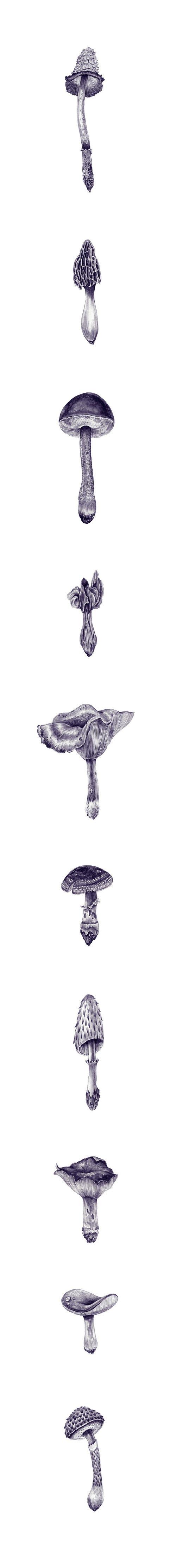 Drawings by artist Eibatova Karina