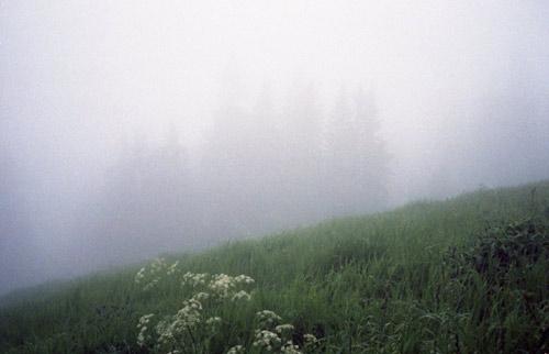Photographer Anett Holmvik photography