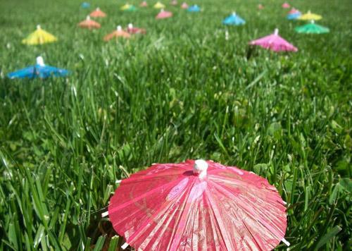 umbrellas by christo