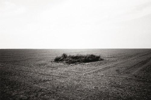 Photographer Yann Orhan photography