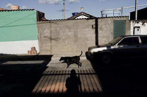 Photographer Gustavo Minas photography