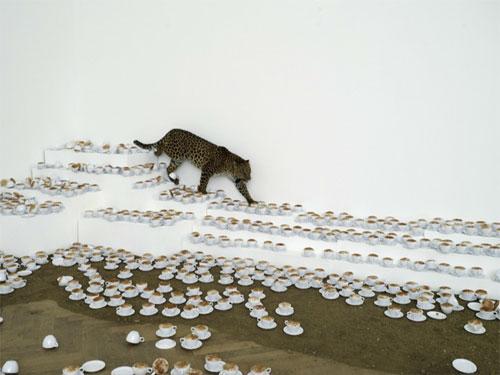 Artist Paola Pivi