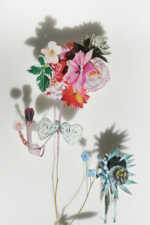 Flower Constructions by artist Anne Ten Donkelaar