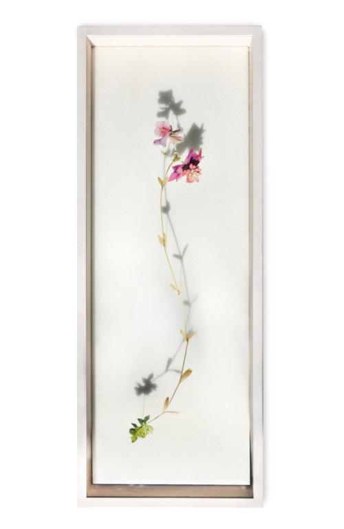 Flower Constructions by artist Anne Ten Donkelaar