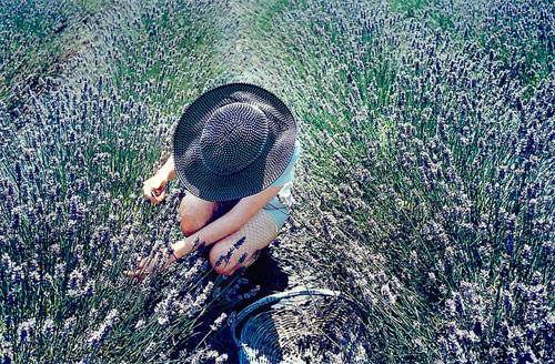 Photographer Laina Briedis photography