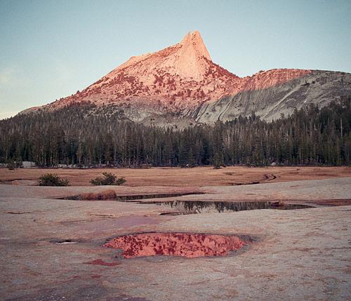 Photographer Cody Cobb photography