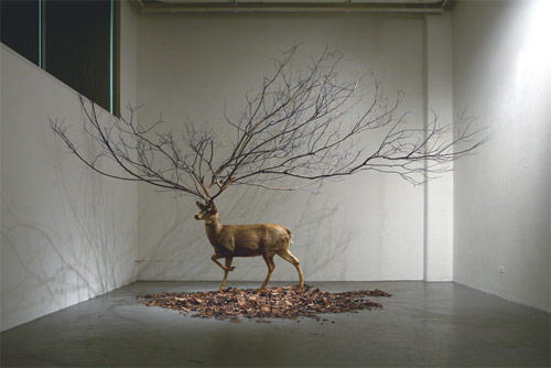 Sculptures by artist Myeongbeom Kim