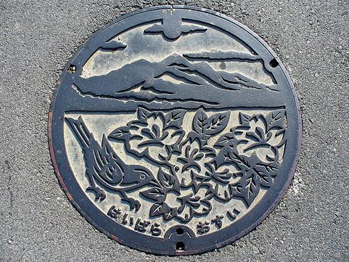 Beautiful Japanese Manhole Covers