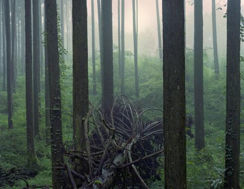 Photographer Yosuke Bendai