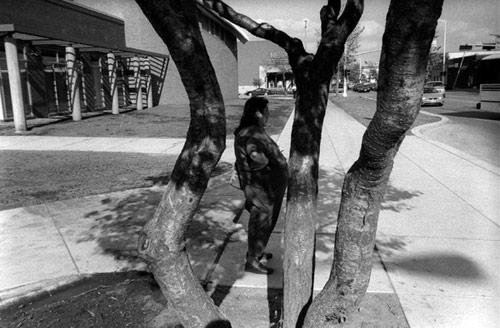 Photographer John Sypal photography