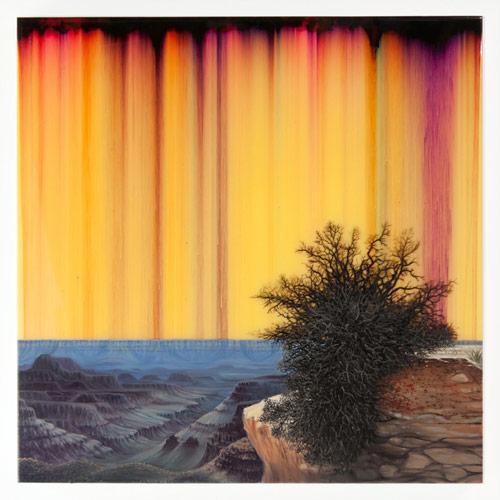 Artist painter Shane McAdams