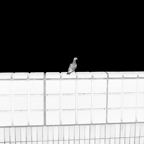 Photographer Marten Lange