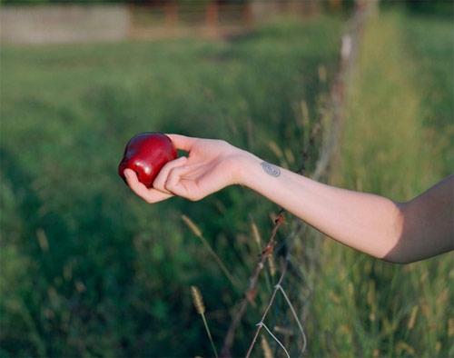 Photographer Daniel Farnum