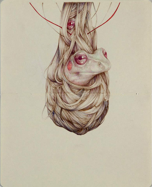 Drawings by artist Marco Mazzoni