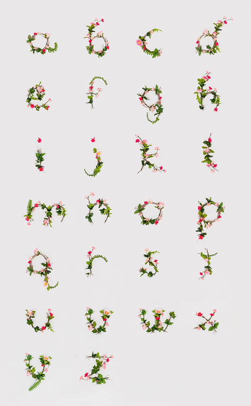 Typography by Anna Lee