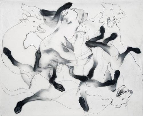 Artist Anthony Goicolea