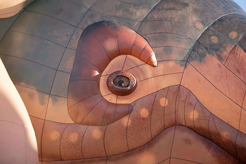 the skywhale large balloon