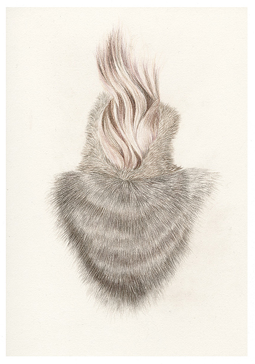 Drawings by artist Tracy Timmins