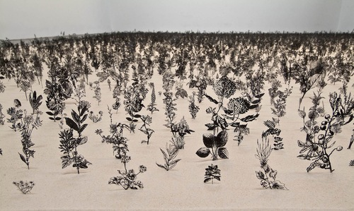 Zadok Ben-David steel sculptures blackfield