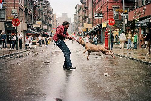 everybody street Documentary about New York Street Photographers