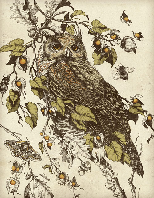 Artist illustrator Teagan White