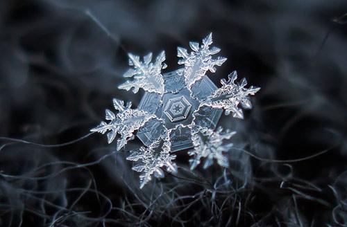 Photographer Alexey Kljatov Tapes Lens To Camera To Take Incredible Macro Snowflake Photos