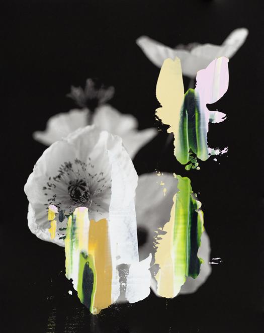 manipulated photographs by Nanna Hänninen