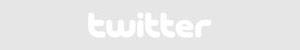 social twitter button