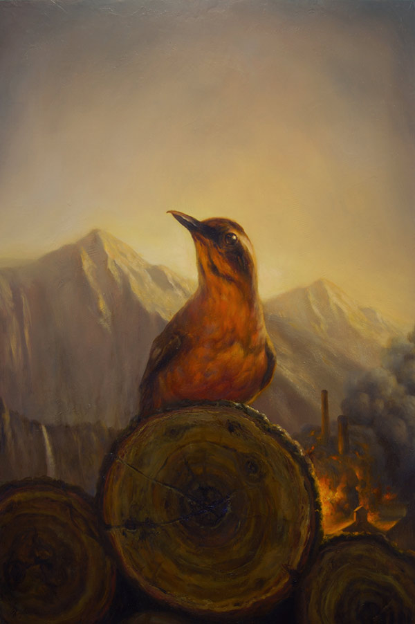 martinwittfooth-11