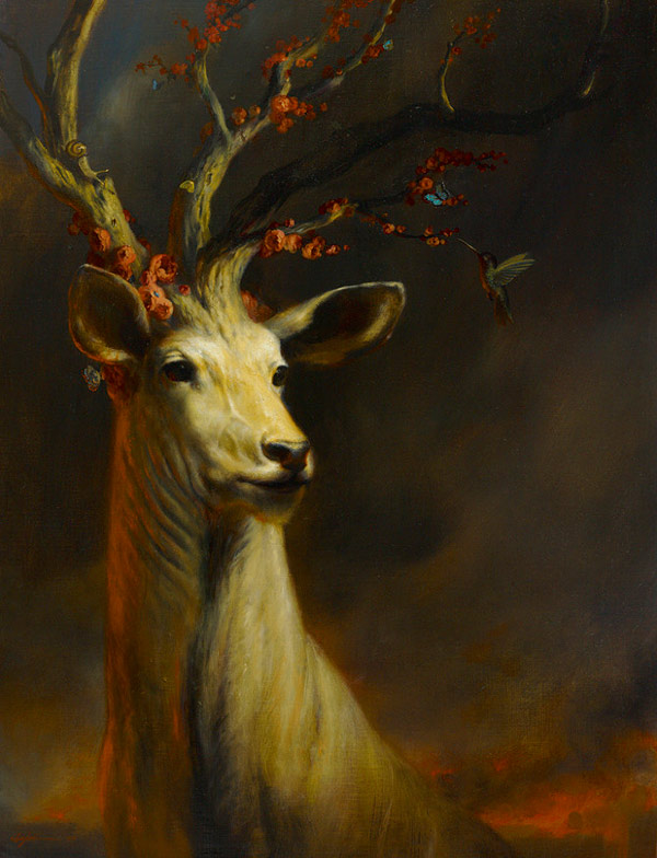 martinwittfooth-12