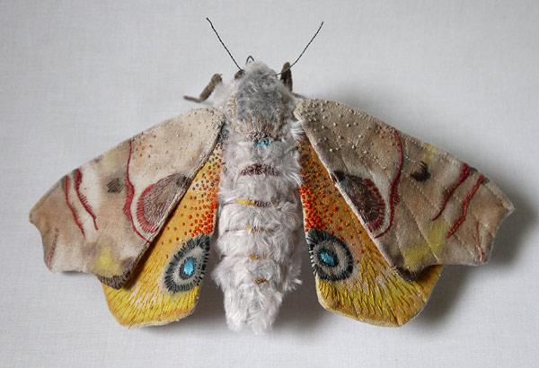 yumi-okita-moths-01