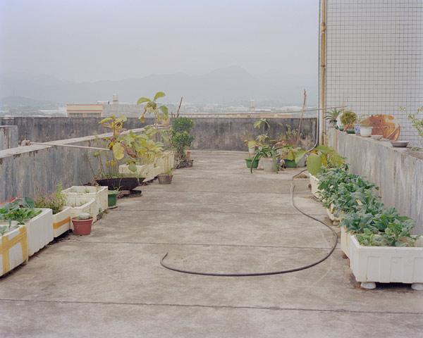 jiehao-su003