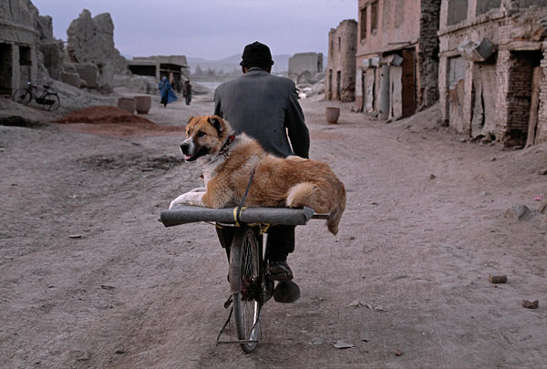 stevemccurry06