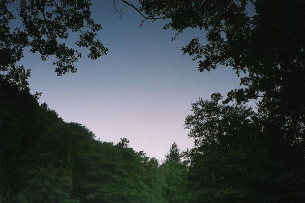 fred-huening-07