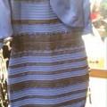 blueblack-whitegold