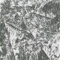 leopardmoth-04