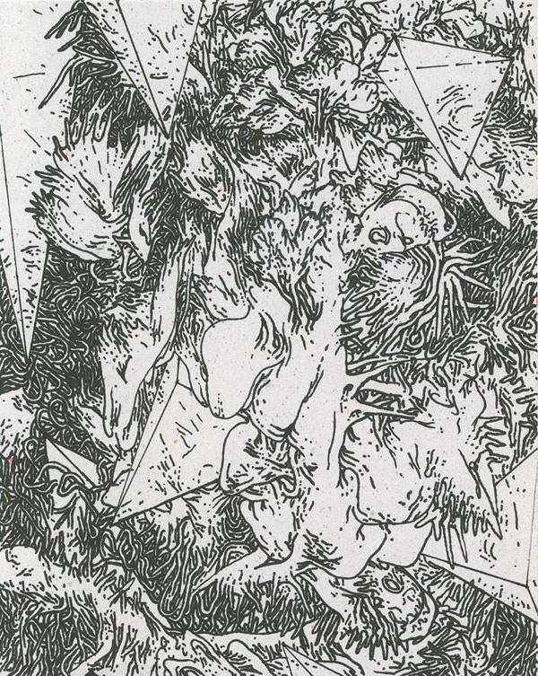 leopardmoth-06