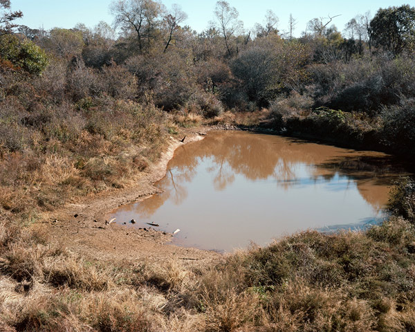 Mud-Pond-No.-1_16