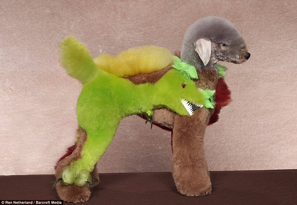 google image search inspiration �poodle grooming art