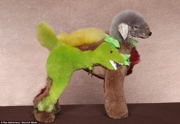 poodle-art-grooming-08